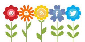 Von der Online-PR zum Social Media Marketing (Gesamtpaket) @ Lernplattform WPLearndash | Zuid-Scharwoude | Noord-Holland | Niederlande
